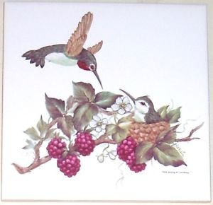 "HUMMINGBIRD WITH BERRIES  CERAMIC TILE 6"" X 6"" KILN FIRED DECOR"