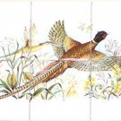 "Pheasant Ceramic Tile Mural Backsplash 6pc 4.25"" Wild Bird Kiln Fired Decor"