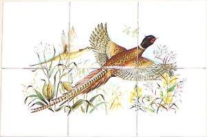 "Pheasant Ceramic Tile Mural Backsplash 6pc 4.25"" Wild Bird Kiln Fired Decor"