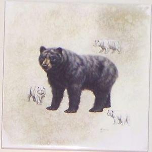 "Bear Ceramic Tile 6.00"" x 6.00"" Kiln Fired Wild Life Decor"