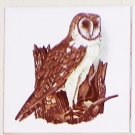 "Owl #1 Bird Ceramic Accent Tile 4.25"" Kiln Fired Decor Wild Life"