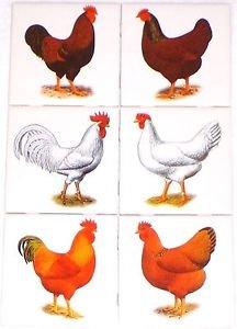 """Rooster and Hen Set of 6 Ceramic Tile 4.25"""" Kiln Fired Back Splash Chicken"""