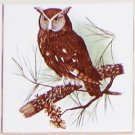 "Owl #2 Bird Ceramic Accent Tile 4.25"" Kiln Fired Decor Wild Life"