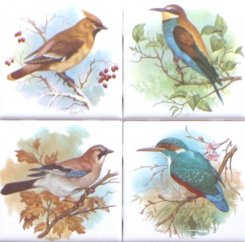 "Beautiful Birds Ceramic Tile set 4 of 4.25"" x 4.25"" Kiln Fired Song Bird Decor"