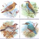 "Beautiful Birds Ceramic Tile set 4 of 4.25"" x 4.25"" Kiln Fired Song Bird Decor"