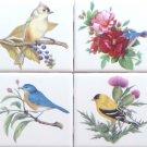 "Beautiful Birds Ceramic Tile set 4 of 4.25"" x 4.25"" Kiln Fired Song Bird Decor B"