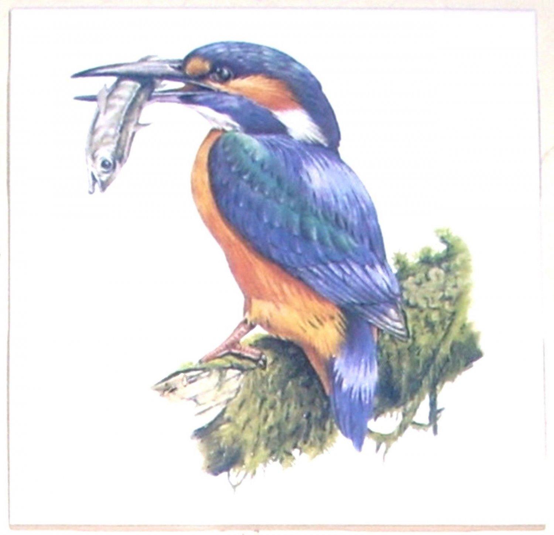 "King Fisher Bird 4.25"" Kiln Fired Back Splash Accent Ceramic Tile #2"