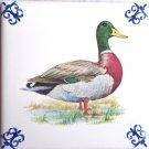 "Mallard Duck Farm Animal Ceramic Tile 4.25"" x 4.25"" Kiln Fired Delft Style Decor"
