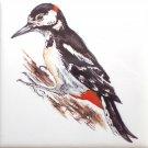 "Wood Pecker Bird Ceramic Tile 4.25"" x 4.25"" Kiln Fired Accent"