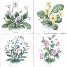 "Flower Ceramic Tile set of 4 / 4.25"" Primula Vulgaris Kiln Fired Herb Decor"