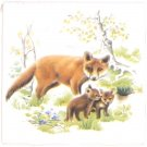 "Fox Family Ceramic Tile 4.25"" Wild Life Collection Kiln Fired Decor Back Splash"
