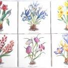 "Botanical Flower 6 / 4.25"" x 4.25"" Daffodil Tulip Hyacinthus Crocus Ceramic Tile"