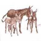 "Donkey Ceramic Tile 4.25"" Kiln Fired Decor"