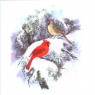 "Winter Cardinal Song Bird Pair Song Bird Ceramic Tile 4.25"" x 4.25"" Kiln Fired"
