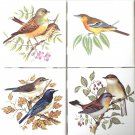 "Decor D Pretty Song Bird set of 4 Ceramic Tiles 4.25"" x 4.25"" Kiln Fired Decor"