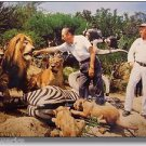 Jungle Cruise Disneyland Walt Disney Tames Lion COLOR 8x10 photograph 1960s