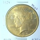 Golden Toned ! 1924 Peace Silver Dollar Choice Brilliant Uncirculated