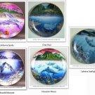 UNDERWATER PARADISE, Porcelain Plates, Danbury Mint