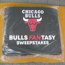 Chicago Bulls NBA 2019 Illinois Lottery Bulls Fantasy Sweepstakes Giant Standee New