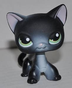 Shorthair Kitten #336 Littlest Pet Shop (Retired) Collector Toy LPS Collectible   Figure Loose