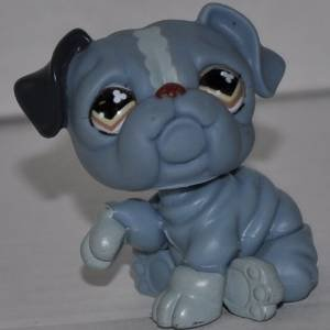 Bulldog #668  Littlest Pet Shop Retired Collector Toy  LPS Collectible Figure  Loose