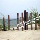 Beach Dune Fence (Beach 005) - 8 x 10 Matted Photograph