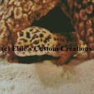 Nibbles - Leopard Gecko 1 - PDF Cross Stitch Pattern