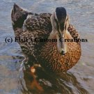 Single Duck 1 - PDF Cross Stitch Pattern