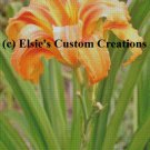Tiger Lilly 2 - PDF Cross Stitch Pattern