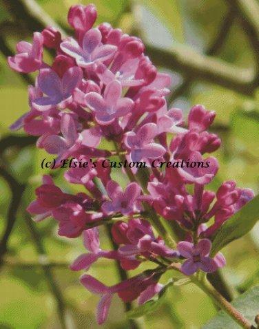 Elsie's Lilacs 6 - PDF Cross Stitch Pattern
