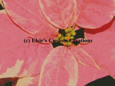 Poinsettia Flowers 5 - PDF Cross Stitch Pattern