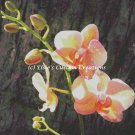 Orchid 1 - PDF Cross Stitch Pattern