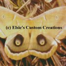 Giant Moth 1 - PDF Cross Stitch Pattern
