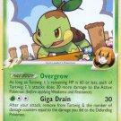 Pokemon Rising Rivals Common Card Turtwig GL 85/111