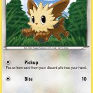 Pokemon Black & White Common Card Lillipup 80/114