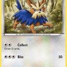 Pokemon Black & White Uncommon Card Herdier 82/114