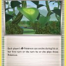 Pokemon XY Ancient Origins Single Card Uncommon Forest of Giant Plants 74/98