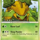 Pokemon HS Unleashed Single Card Uncommon Grotle 31/95