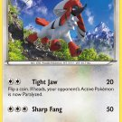 Pokemon XY FlashFire Single Card Uncommon Furfrou 87/106