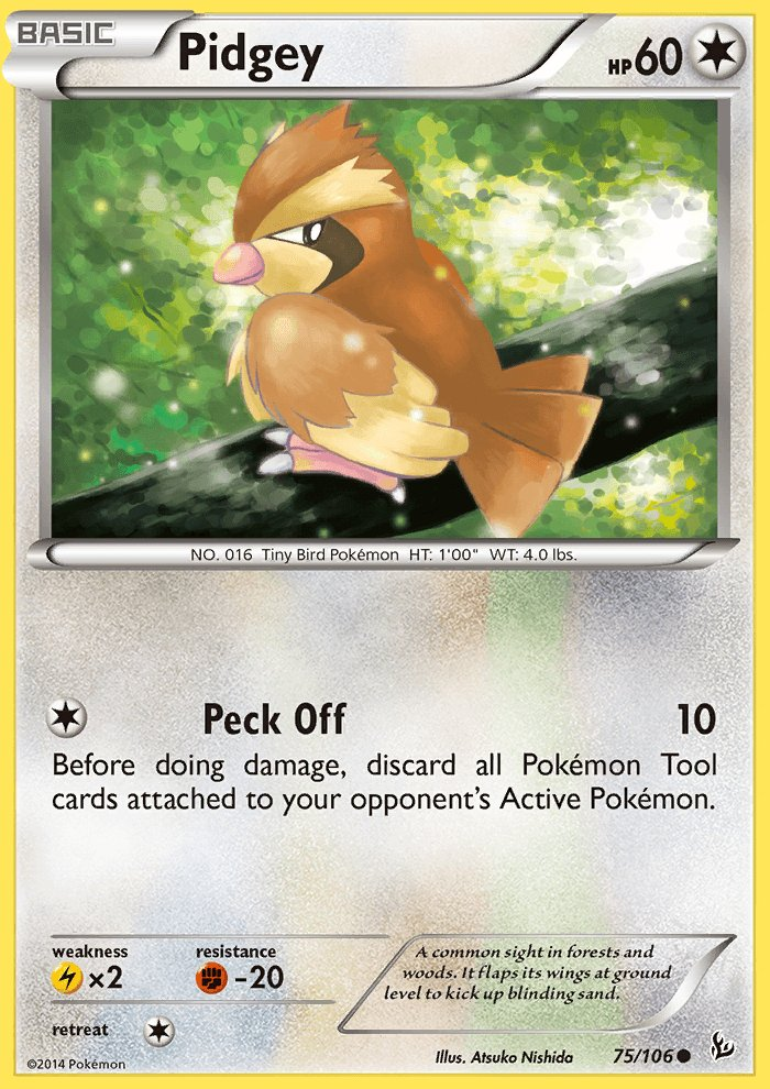 Pokemon XY FlashFire Single Card Common Pidgey 75/106
