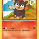 Pokemon XY Steam Siege Single Card Common Litleo 22/114