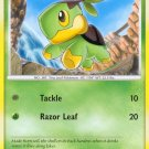 Pokemon POP Series 8 Single Card Common Turtwig 17/17