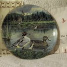 KNOWLES The Pintail Duck Wildlife Decor Plate 1986