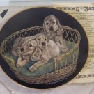 MM TENDER TRIO Puppy Dog Decor Plate 1984 Puppy