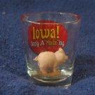 "IOWA Simply A ""Maize"" ing Decorative Shot Glass"