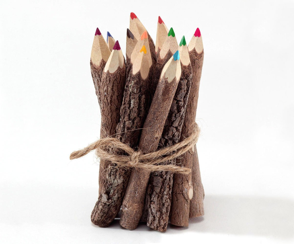 Rustic Twig Colored Pencils 3 inch Set of 12 pcs Tree Branch Color Pencils Handmade Color Pencils