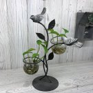 Hydroponic Home Décor - Two Pots and Birds