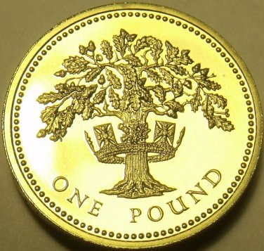 Gem Cameo Proof Great Britain 1987 Pound~Oak Tree~Edge Inscription~Free Shipping
