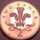 Cameo Proof Great Britain 2003 2 Pence~Super Coin~100k Minted~Free Shipping