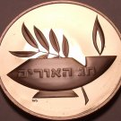 Massive Franklin Mint Bronze Proof Medallion~The Star Of David/Lamp~Free Ship